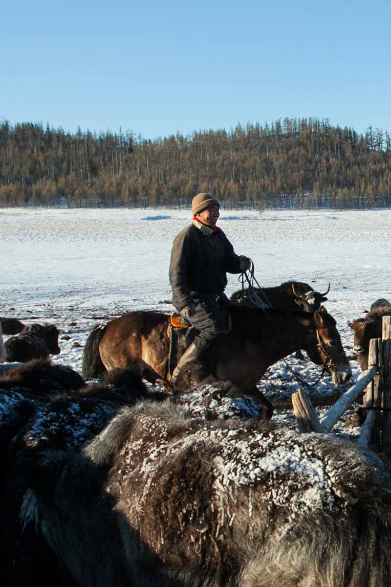 e0ea8d7b9b5 Echarpe laine duvet de bébé yack - Missègle  Fabricant d écharpes en laine  de yack